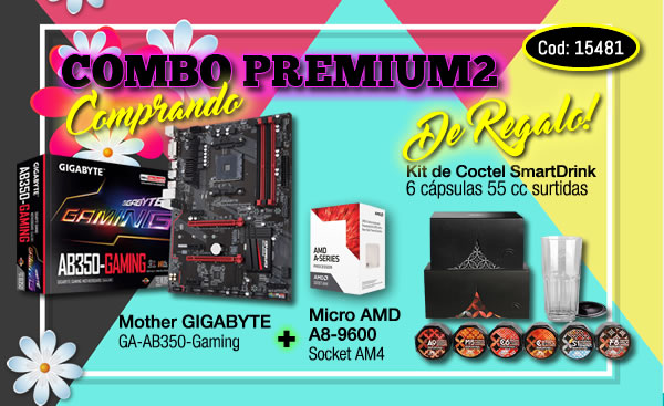 Mother GIGABYTE Gaming + Micro AMD